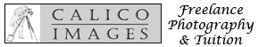 Calico Images Photography Logo